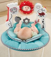Fisher Price lamamistool 2in1
